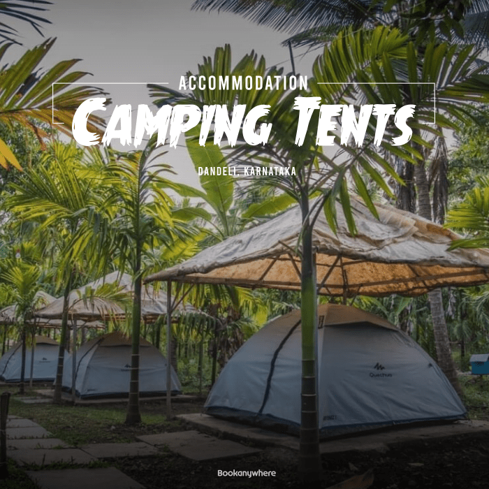 dandeli camping tent stay + activities package price & details