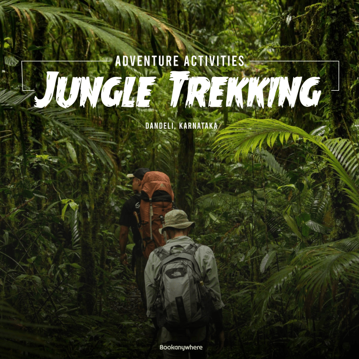 jungle trekking in dandeli jungle resort packages
